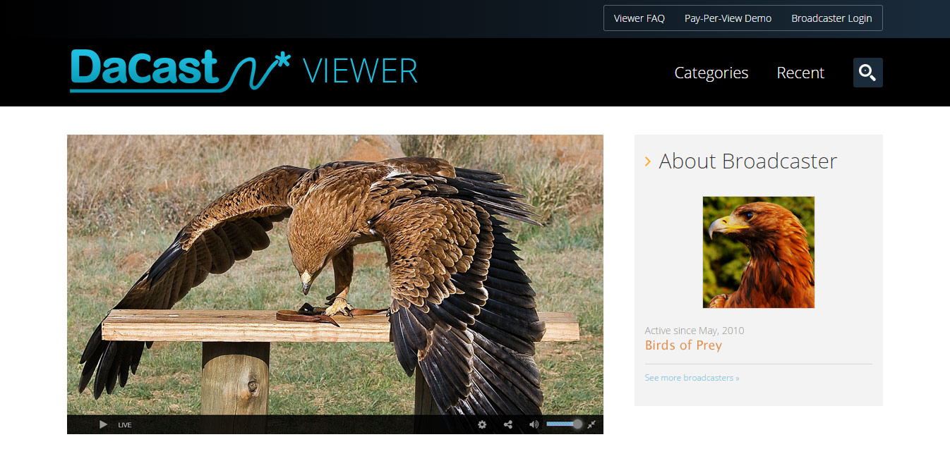 bird live sports streaming