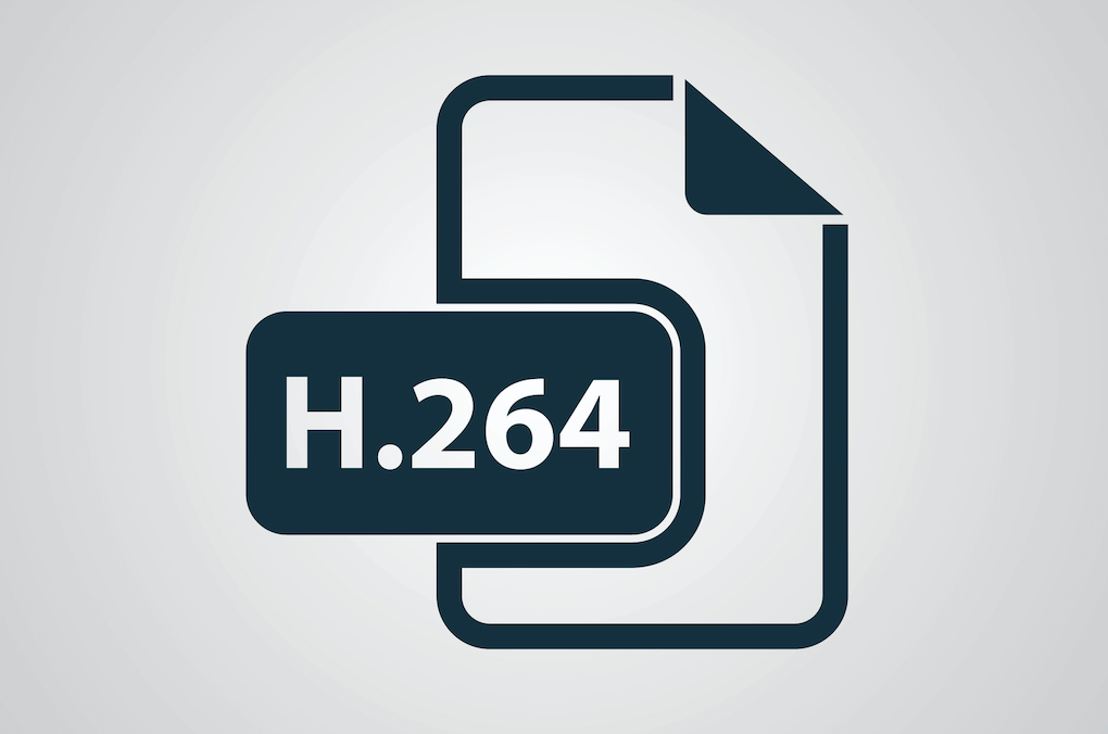 h.264 Advanced Video Coding (AVC)