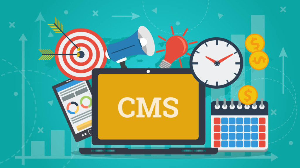 what is a video cms