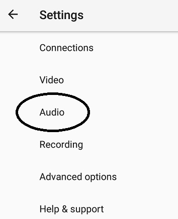 Live Video Streaming - Larix Mobile Broadcaster - audio settings