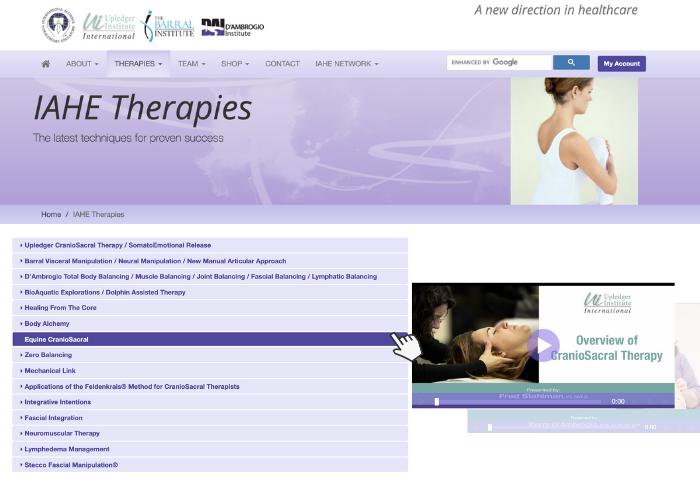 IAHE Therapies
